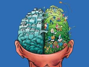 49_right_brain