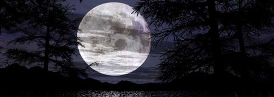 cropped-cropped-moonbanner